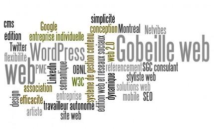 Gobeille web [édition web et réseaux sociaux] ACCUEIL